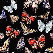 Porranvändning är som att jaga fjärilar av papp…
